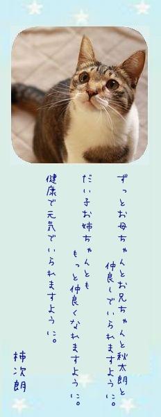 七夕祭り 2011 13 柿次朗さんのお願い事