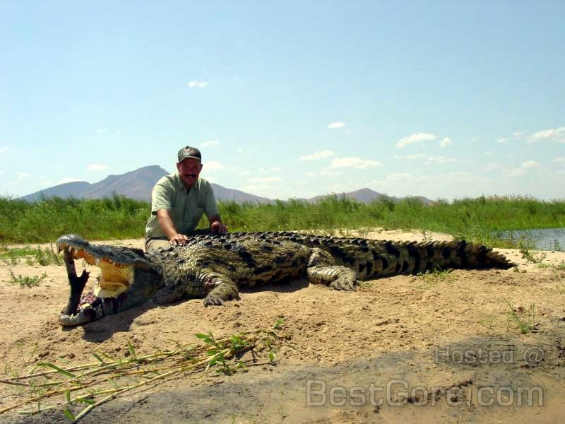 hunters-kill-salt-water-alligator-find-human-remains-inside-01.jpg
