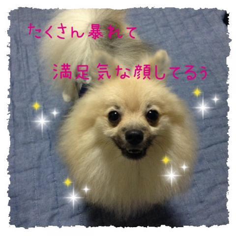 IMG_2614[1]_convert_20141023093828