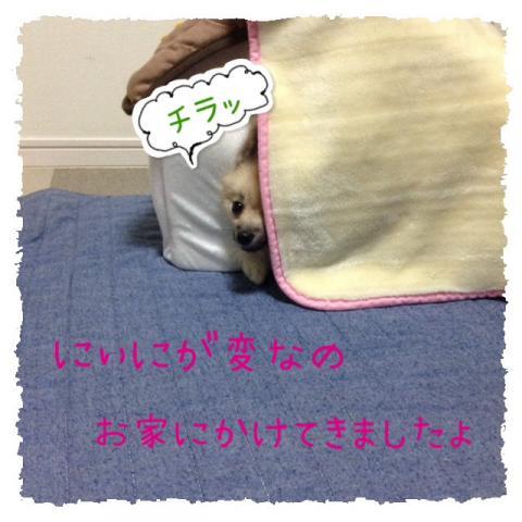 IMG_2615[1]_convert_20141023093757