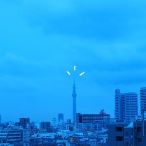 11620004.jpg
