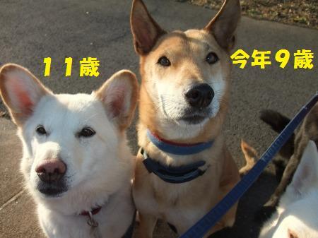 2013_0227_6.jpg