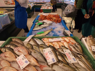 11.1魚が安い3