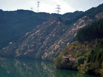 kokudounarazu2-2.jpg