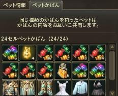 1103051.jpg
