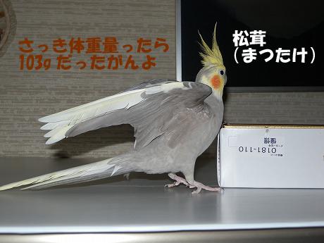 2011006