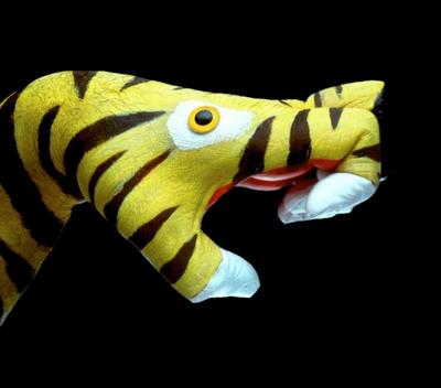 mariotti tigre