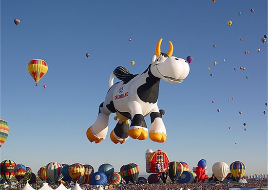 Balloons_Festival_Creative_Amazing_and_Fun_36.jpg