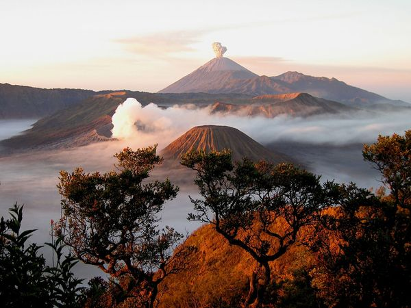 Go_to_Indonesia_Travel__3.jpg