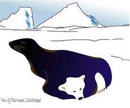 seal-bear-ice.jpg