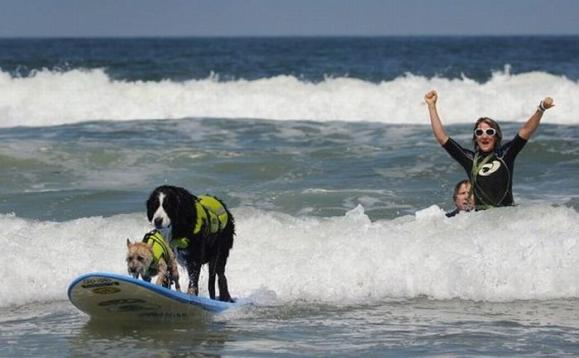 surf_03.jpg