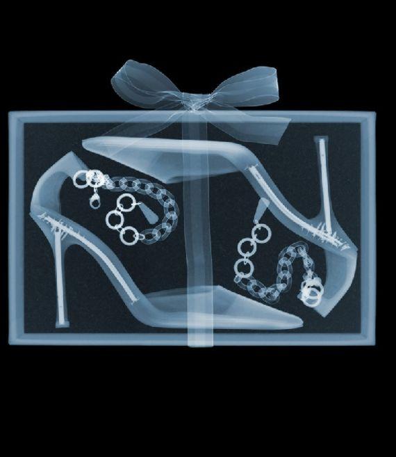 x-ray12.jpg