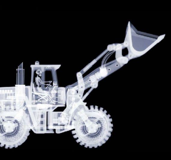 x-ray17.jpg