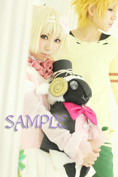 sampleIMG_1341.jpg