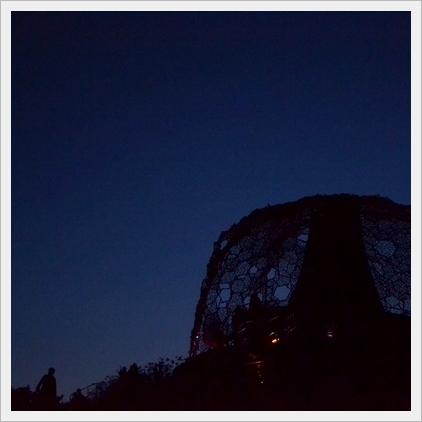 六甲枝垂れの夜