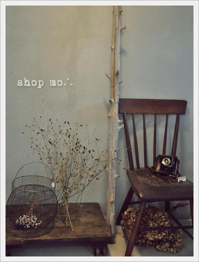 shop mo∴