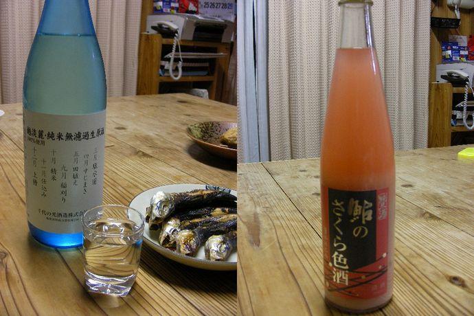 新潟の酒201101