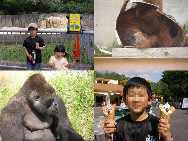 20110514東山動物園