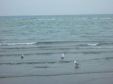 誰もいない海…
