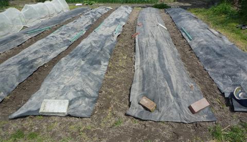 加温と雑草対策