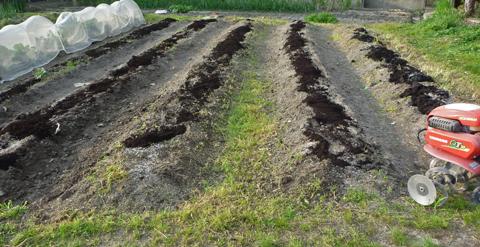 堆肥をいれてみた