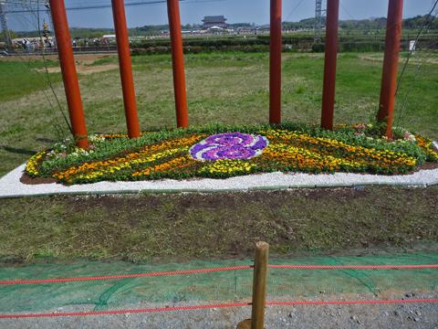花がきれい~