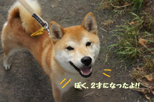 ハッピーバースデー賢ちゃん!