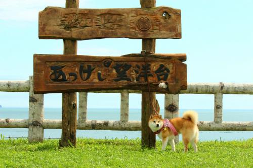 ハマ家の夏休み2012・厚岸