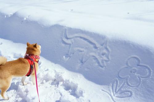 雪の落書き