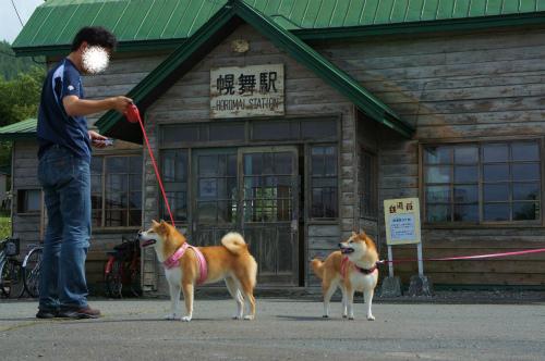 ぽっぽや・幌舞(幾寅)駅