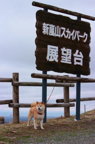 新嵐山スカイパーク