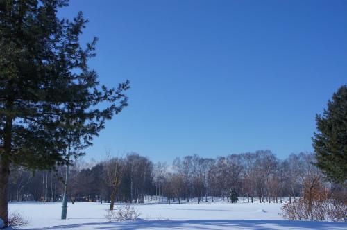 本日の緑ヶ丘