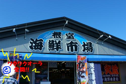 根室海鮮市場