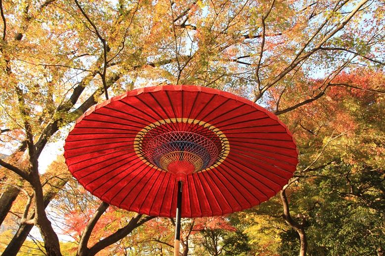 20131123小石川庭園4a