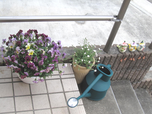 春の華 3