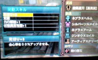 CA3G0087_convert_20120213221809.jpg
