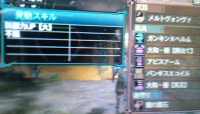 CA3G0097_convert_20120214144711.jpg