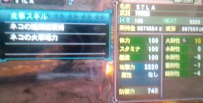 CA3G0135_convert_20120308021358.jpg