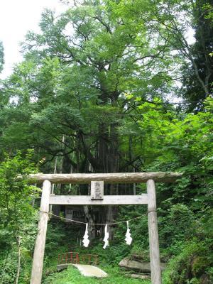 軍刀利神社7