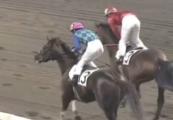 20131115 川崎5R テンションコード07