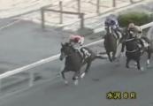20131116 水沢8R ロータスドリーム 02