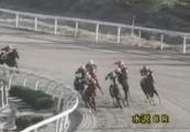 20131116 水沢8R ロータスドリーム 06