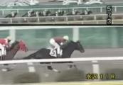20131130 水沢11R メジロオマリー 04