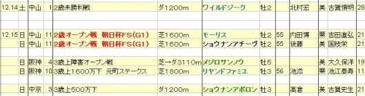 2013121415想定
