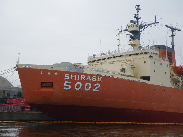10月23日湾奥初出船 004