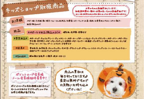 PDF3_1.jpg
