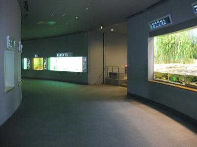 琵琶湖博物館 005