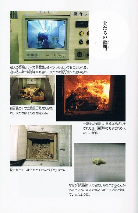 CCF20120206_00001.jpg