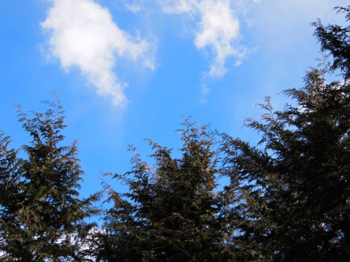 2012年 3月25日 武甲山×子持山×大持山 29