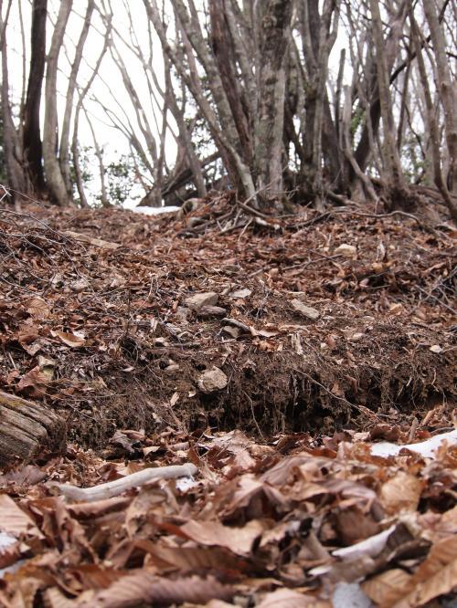 2012年 3月25日 武甲山×子持山×大持山 37